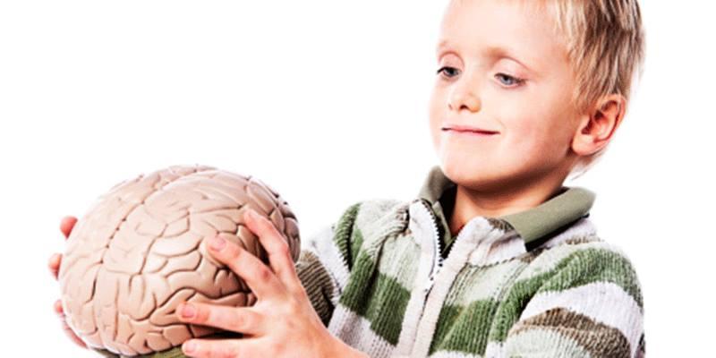 التوتر بيضغر حجم الدماغ إزاي نحاربه ؟