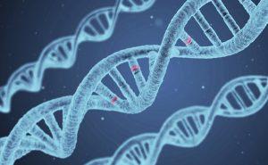 الاكتئاب والجينات
