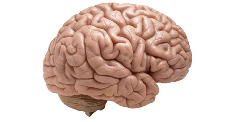 7 عادات يومية بنعملها بتدمر صحة الدماغ